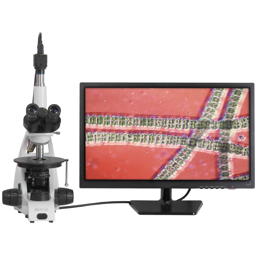 Ginger HD MCX51 - Bildschirmübertragung