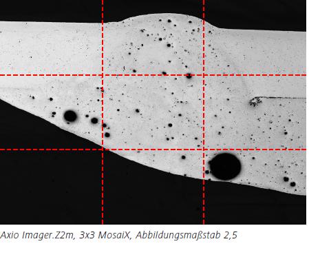 Abbildung 1.1Axio Imager.Z2m, 3x3 MosaiX, Abbildungsmaßstab 2,5