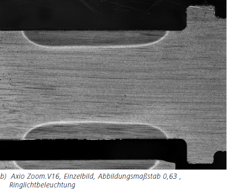 Abbildung 3b b) Axio Zoom.V16, Einzelbild, Abbildungsmaßstab 0,63 ,Ringlichtbeleuchtung