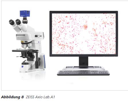 Abbildung 8 ZEISS Axio Lab.A1